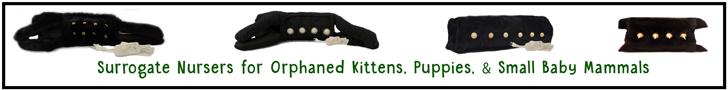 Wholeful-Pet-Surro-Kitty-2